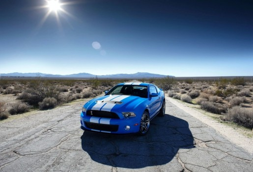 2010-ford-shelby-gt500_8