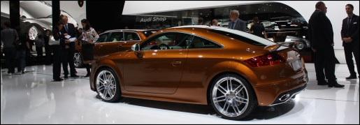 Audi Exclusive Bruin
