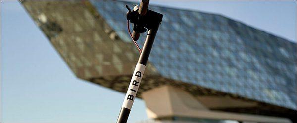 Elektrische Bird deelsteps nu ook beschikbaar in Antwerpen.