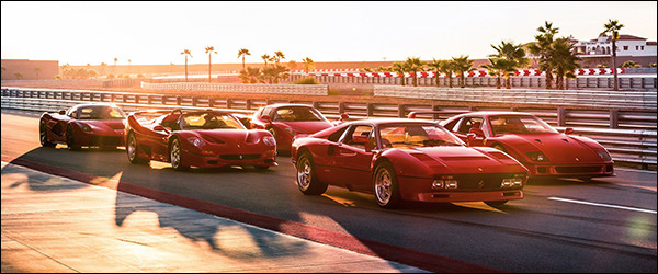 Video: Ferrari 288 GTO vs F40 vs F50 vs Enzo vs LaFerrari