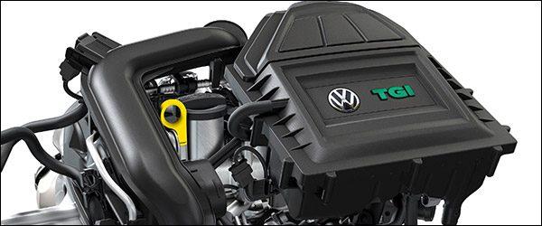 Officieel: Volkswagen Polo TGI + Golf TGI (CNG) (2019)